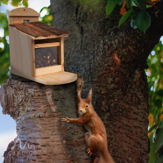 Mangeoire pour écureuil