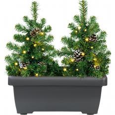 Sapins illuminés LED en jardinière-2