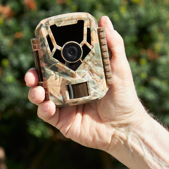 Caméra d'observation compacte LCD