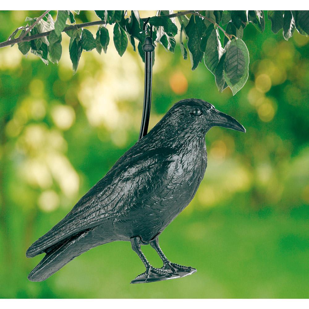 effaroucheur d 39 oiseaux corneille achetez ce produit effaroucheur d 39 oiseaux corneille en. Black Bedroom Furniture Sets. Home Design Ideas
